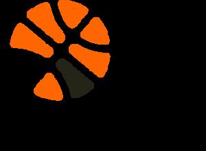 b1-logo